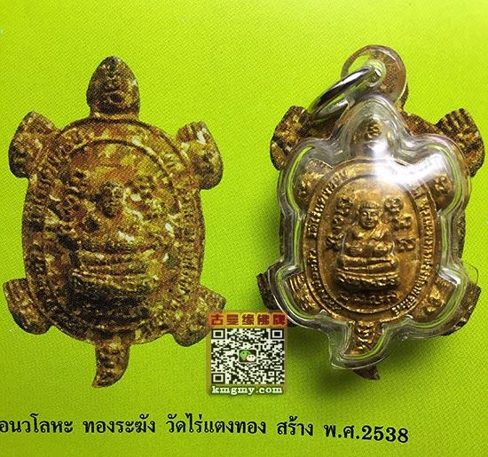 龙婆柳招财龟图鉴5