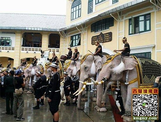 泰国大城府大象,皇家广场向普密蓬国王陛下致敬内容图片