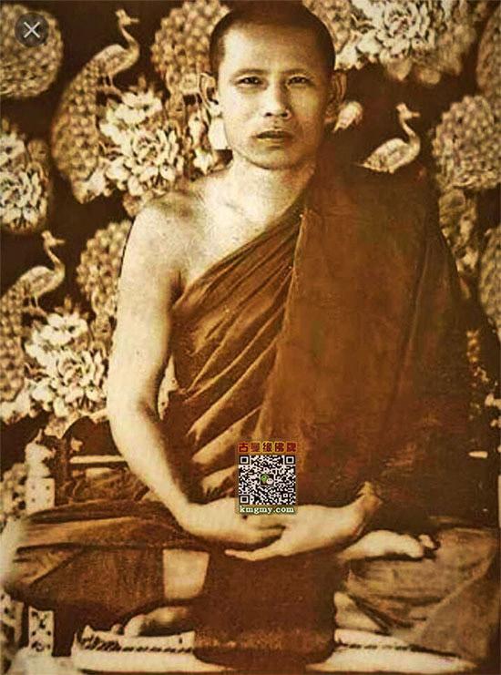 佛陀菩提(60年老牌)图鉴4