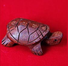 招财健康龟